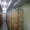 具有良好口碑的商用电磁台式平面炉供应厂家|南宁台式平面电磁炉安装