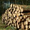 供应木材成品