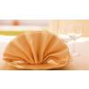 供应供银川餐巾纸盒和宁夏餐巾折花价格