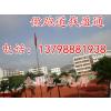供应赣州市安远石城县安全防滑耐磨塑胶跑道施工设计 各种运动跑道材料批发报价