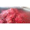 供应腌制红辣椒