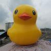 供应房地产品广告模型 促销模型大黄鸭 活动显眼模型