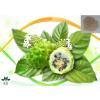润木供应 诺丽果提取物 比例产品 果粉