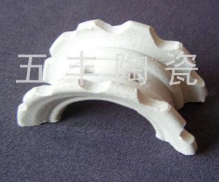 供应陶瓷异鞍环