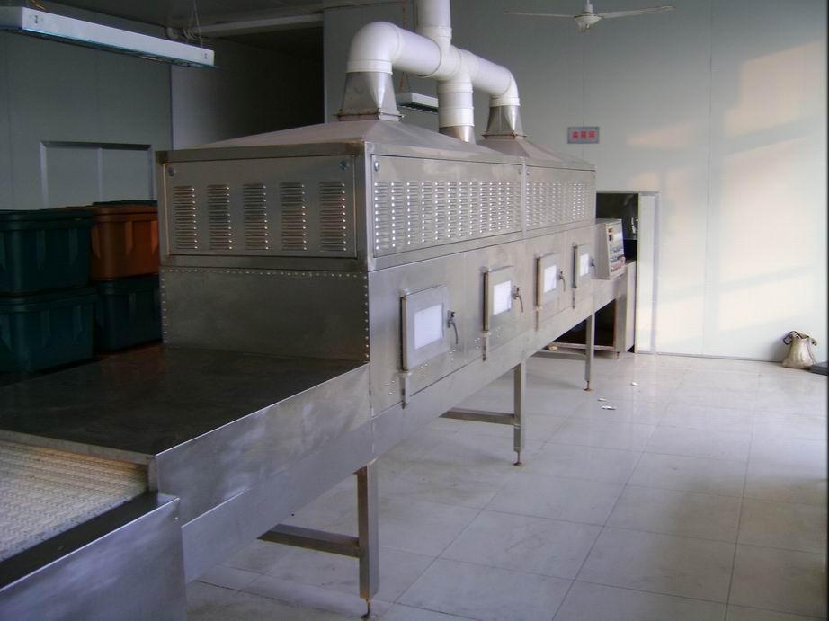 供应微波大枣烘干设备