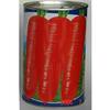 供应韩国红芯五寸萝卜种子