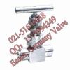 供应波纹管针型阀_德国进口波纹管针型阀