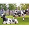 供应玻璃钢雕塑仿真动植物系列仿真奶牛