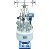 供应微型平行高压反应釜/磁力高压反应釜型号