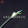 供应厂家定制轻型双芯超软型振动传感光缆