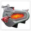 供应燃煤油气导热油炉