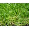 供应休闲人造草 足球场人造草坪