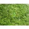 供应园林绿化人造草坪