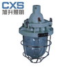 供应CBD53系列隔爆型防爆灯(ⅡB)