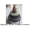 供应特种电缆加工定做13153004060