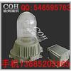 供应NFE9180防眩应急泛光灯 又名防眩应
