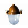 供应优质防腐蚀灯GC57