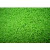 供应广州装饰人造草坪