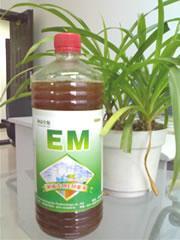 供应食用菌种植专用em菌
