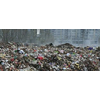 供应城市有机垃圾处理除臭发酵菌