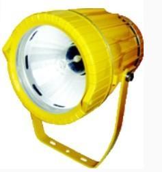供应DGS70/127B(A)矿用投光灯