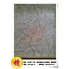 供应质感新材料,忆江南树纹漆爪纹漆