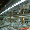 供应河南郑州LED硬灯条/河南郑州LED柜台灯条