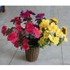 供应杜鹃花盆景,杜鹃花束,杜鹃花枝,仿真花,绢花,仿真植物家居摆