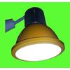 供应青岛LED生鲜灯