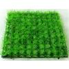 供应塑料草坪-仿真草坪-人造草坪-人造草皮-梦幻花艺