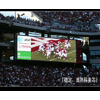 供应瑞安广告LED大电视屏幕