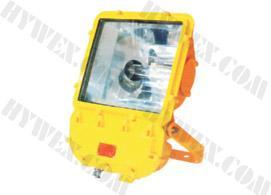 供应防爆泛光灯,优质泛光灯,泛光灯厂家,BFC8110/HN