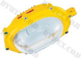 供应防爆应急灯,海洋王防应急灯,BFE8120,应急灯价格
