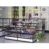 供应杭州珠宝柜台眼镜展示柜烟酒柜精品柜
