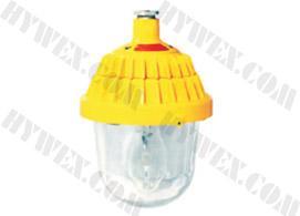 供应防爆平台灯,BPC8720-D防爆平台灯,平台灯价格