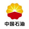 供应中国石油汽车免拆洗清洗剂