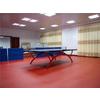 供应西安塑胶运动办公展厅展览商用地板厂家批发安装