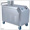 供应水电分离安全无锅炉蒸汽洗车机