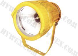 供应矿用隔爆型投光灯,优质矿用投光灯,矿用投光灯厂家