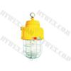 供应矿用隔爆型泛光灯,优质矿用泛光灯,泛光灯销售,DGS70