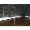 供应台州三门蛇蟠家禽养殖大棚钢架钢管大棚骨架支架 GP932