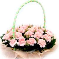 供应妈妈,我爱您康乃馨鲜花
