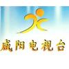 供应咸阳电视台
