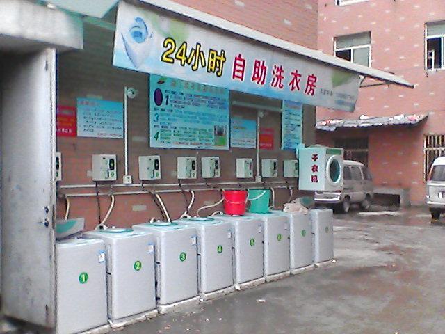 供应【投币洗衣机】 投币洗衣机价格