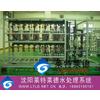 供应大连电子工业用超纯水设备,大连电子清洗用超纯水