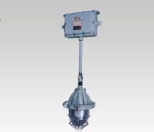 供应BAJ52系列防爆应急灯(ⅡB、ⅡC)