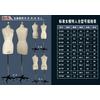 供应橱窗模特道具、展示模特道具、店面模特衣架、试衣模特、时尚模特