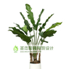 供应仿真植物 仿真植物批发 仿真植物厂家 仿真树