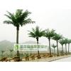 供应仿真植物 仿真植物批发 仿真植物厂家 仿真树报价 仿真椰子树 仿真棕榈树 仿真海藻树
