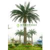 供应仿真植物 仿真植物批发 仿真植物厂家 仿真树 仿真椰子树厂家